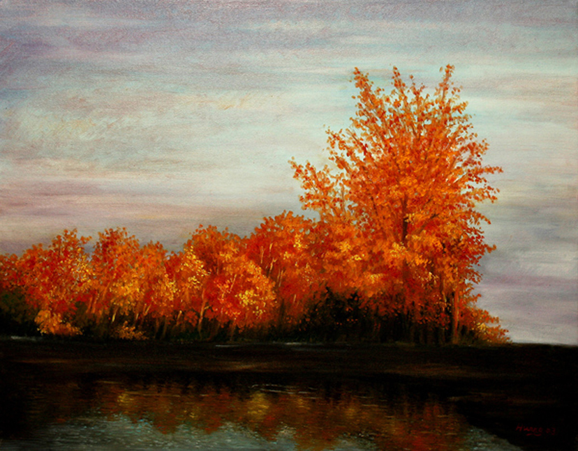 Red Woods at Sun Set (oil)