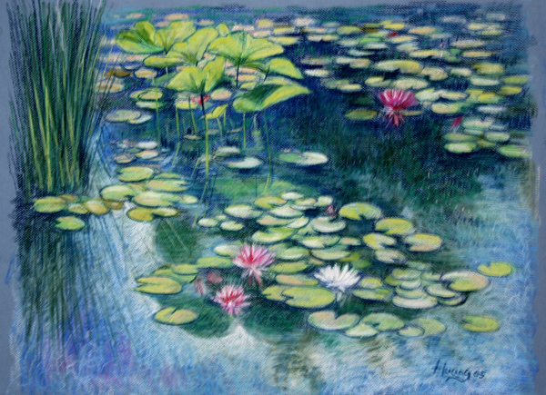 Water Lily Pond (pastel)