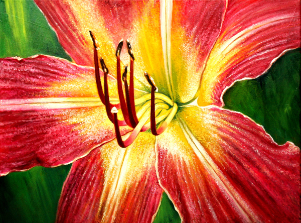 Day Lily  No. 1 (oil)
