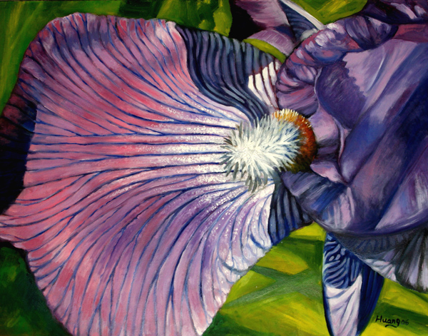 Iris No. 10 (oil)