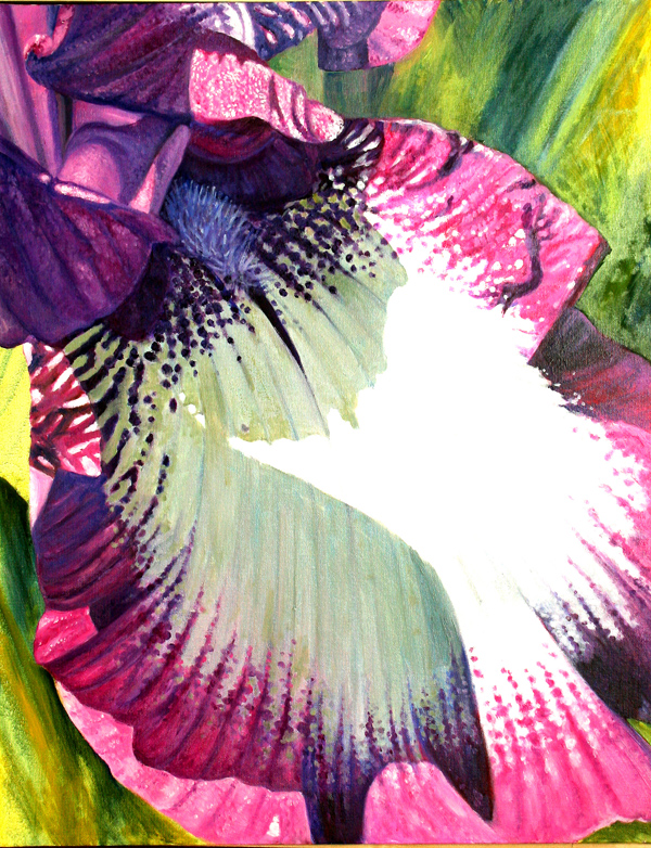 Iris No. 12 (oil)