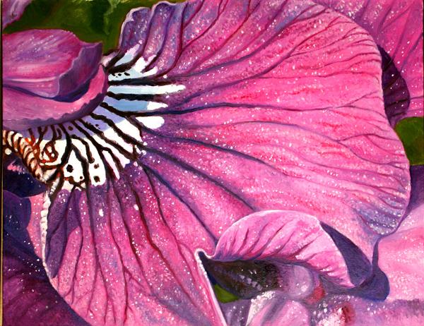 Iris No. 3 (oil)