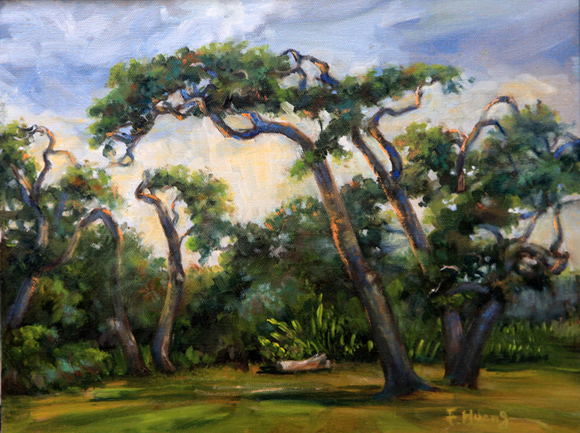 Live Oak Trees (oil)